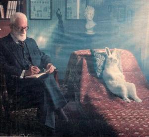 Фотография кролик